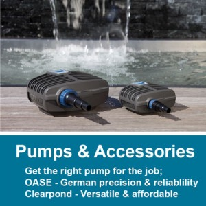 Submersible Pumps & Accessories